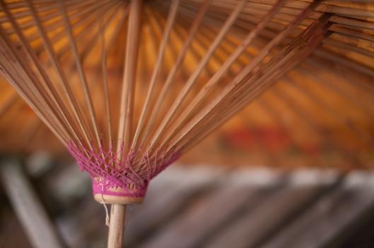 6 Japanese Parasol