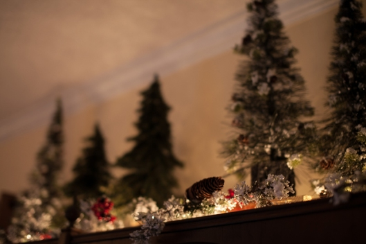 Christmas decor 2012 1