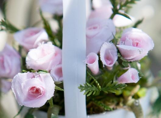 17 Miniature Roses 2