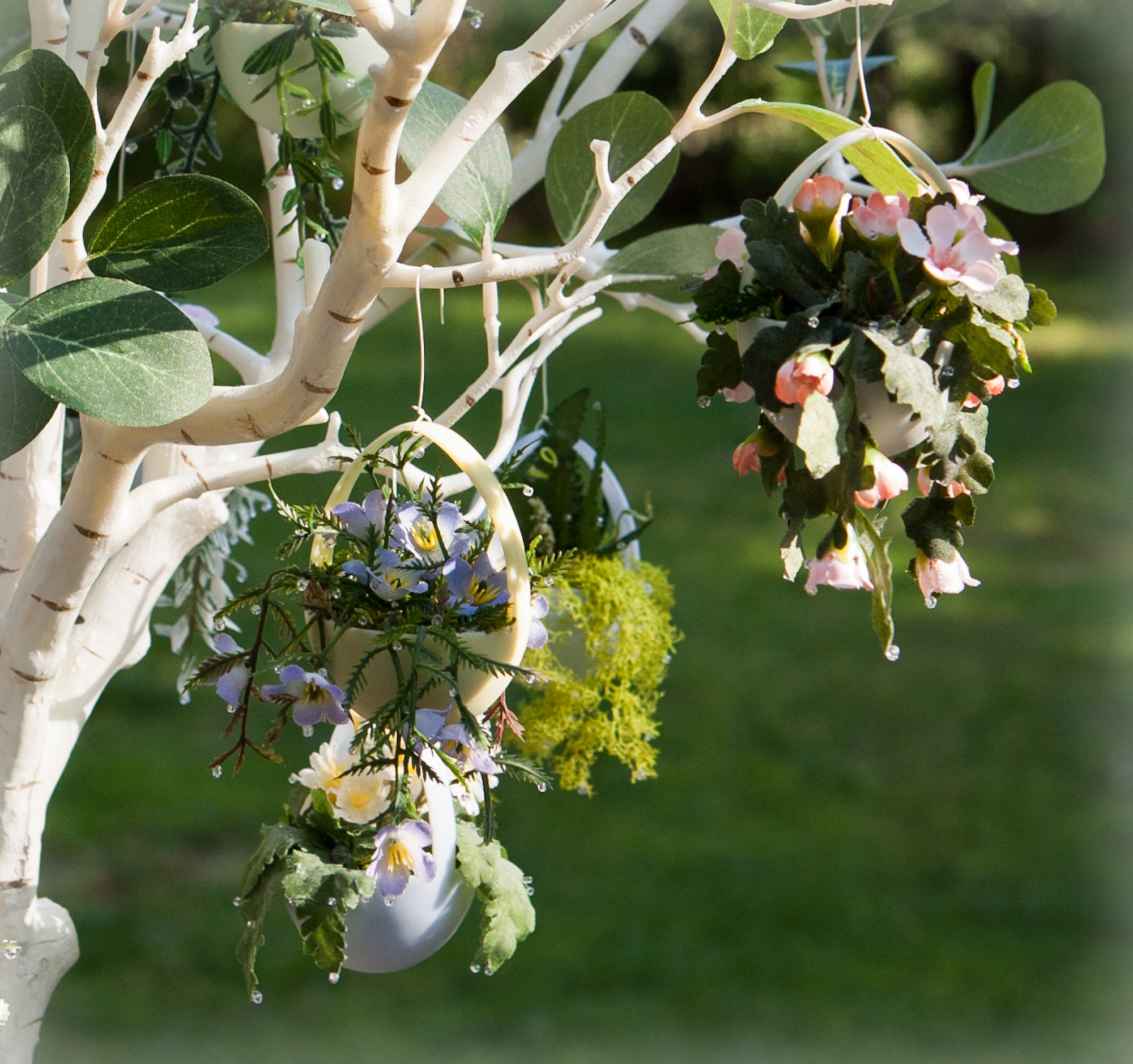 The dewing of the hanging plant easter egg tree all for Como disenar un jardin grande