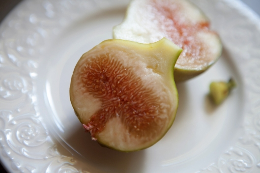 We weren't sure if the figs were ripe or overripe. This was one of the yellower figs. I thought so much white pith might mean the fig wasn't ripe. It still tasted delicious and juicy and sweet.
