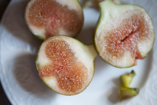 When both figs were compared in flavor and texture, they were still almost identical. The riper fig had a slightly larger pink, seeded center. The seeded area should take up more of the fruit but this year the figs are dropping if left much longer on the tree. They still taste amazing.