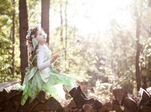 Flower Fairy-10