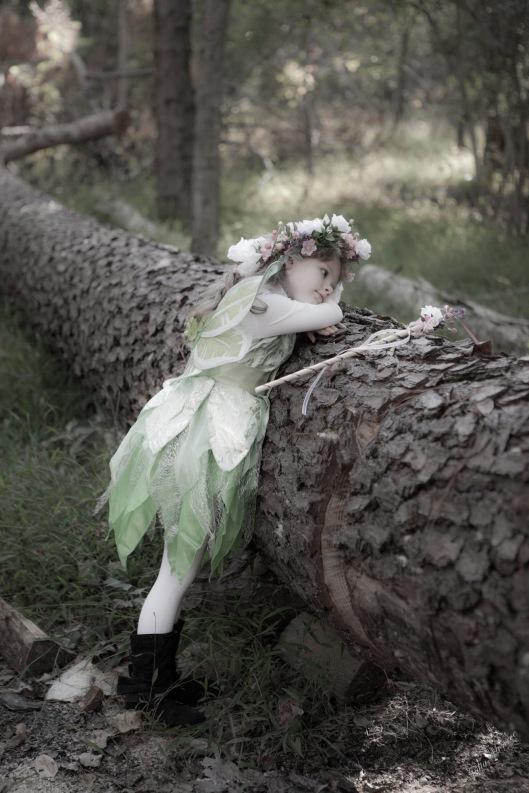 Flower Fairy-12