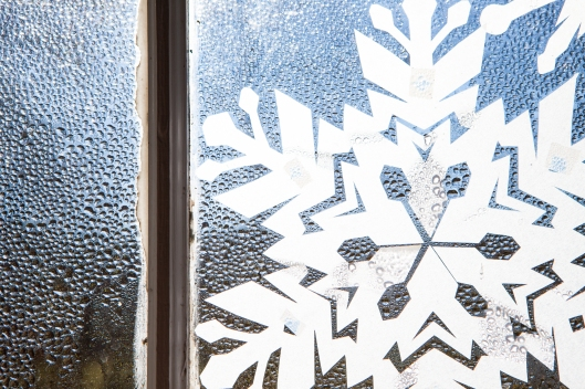 1 Snowflakes in the window