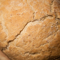 BFN Day - To the Third Neighbor I gave Sourdough Grain Bread