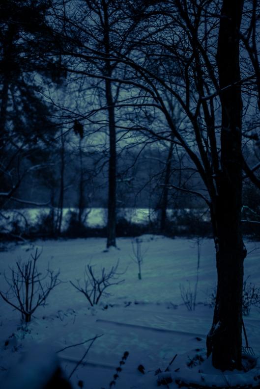 Jan 28 snow 2