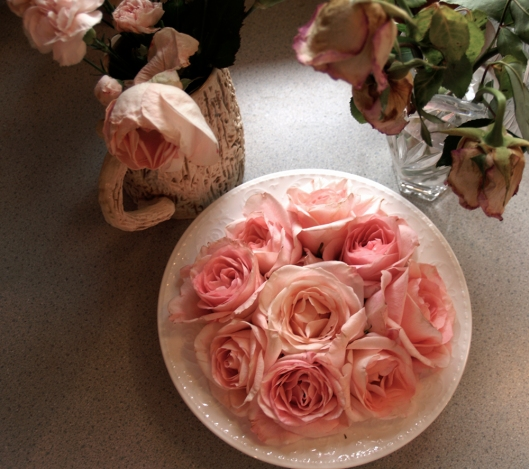All the roses are from the same bouquet but they received different treatment.