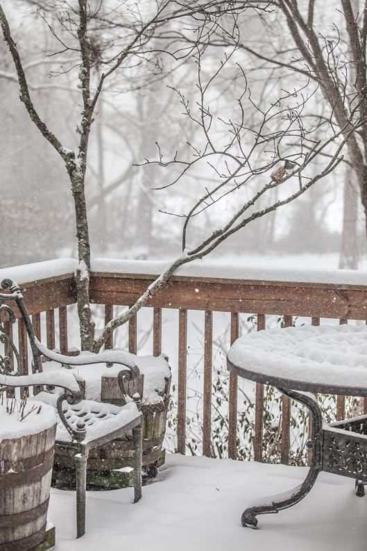 February snow.