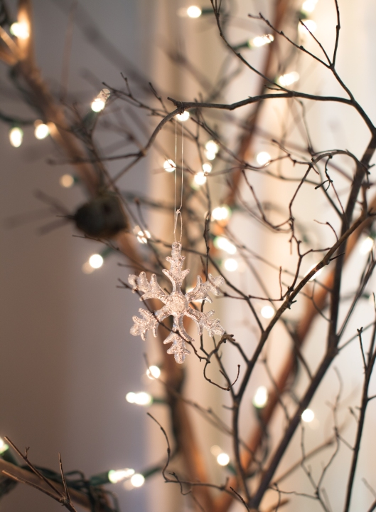 The bare brances were in the corner through winter, strung with lights and crystal snowflakes just to add brightness to the room.