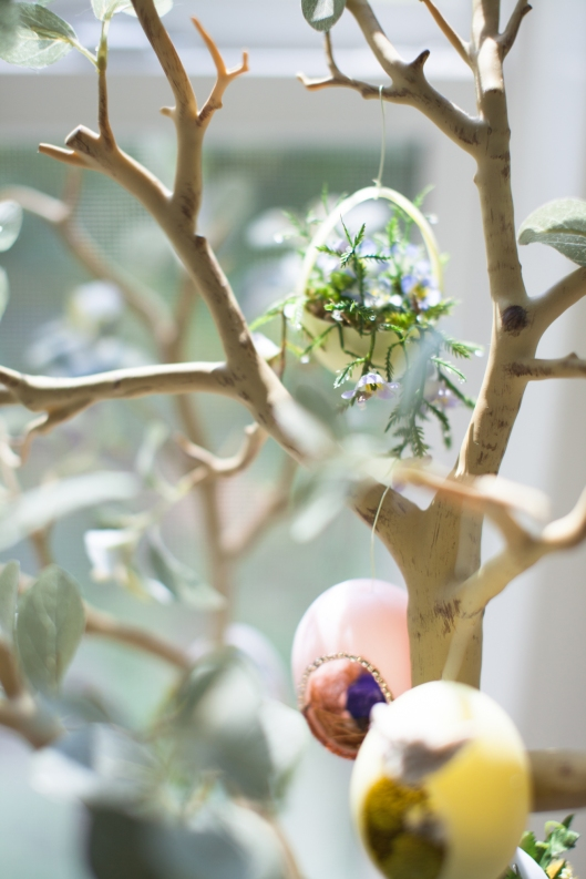 Hanging plant egg tree 14 3