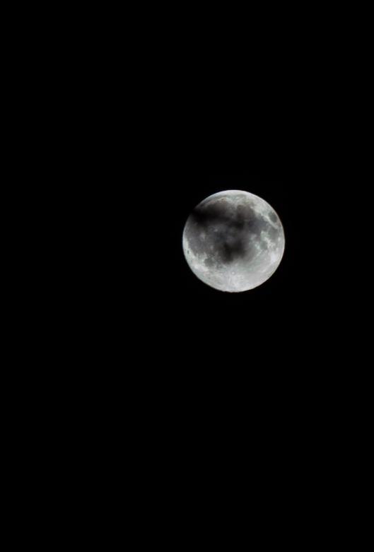 July Moon-1