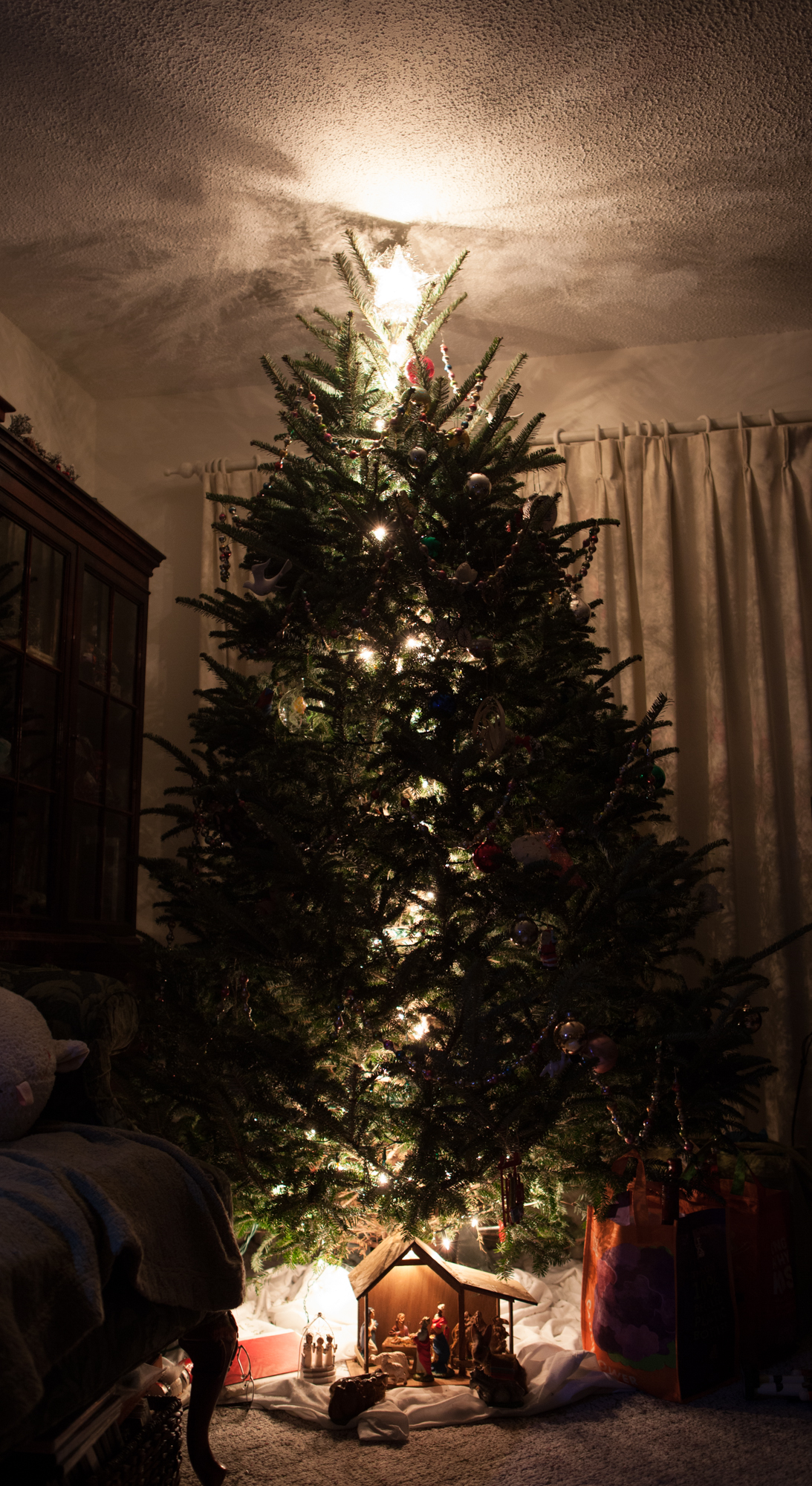 we never see our tree lit until christmas eve every light in the house is