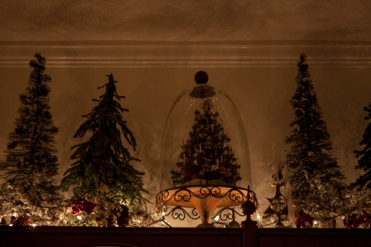 My mom made the miniature tree under the cloche. I have several small forests of trees; this one is on top of the tall dining room book shelf.