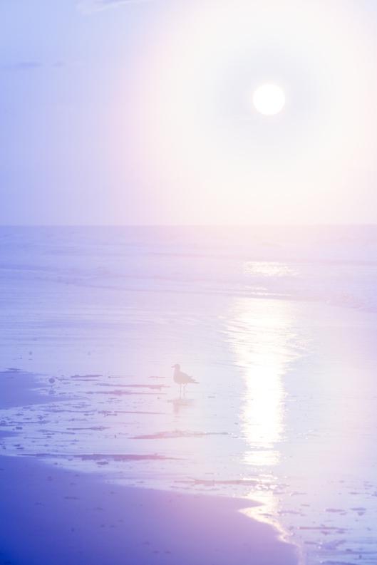 sunset-beach-nc-6139