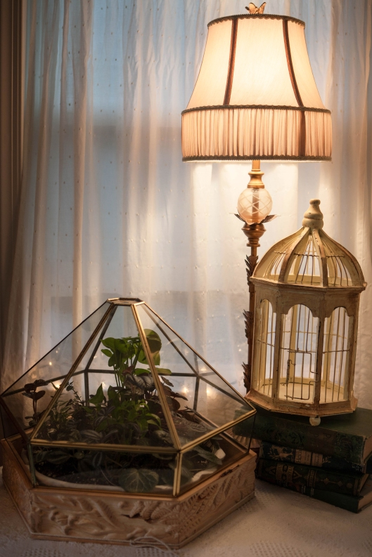 8 light fixture and wood carved terrarium.jpg